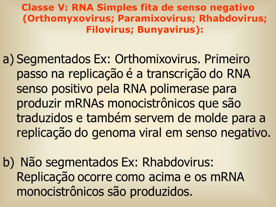 Classe V: RNA Simples fita de senso negativo (Orthomyxovirus; Paramixovirus; Rhabdovirus; Filovirus; Bunyavirus):