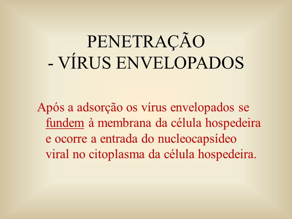 PENETRAÇÃO - VÍRUS ENVELOPADOS