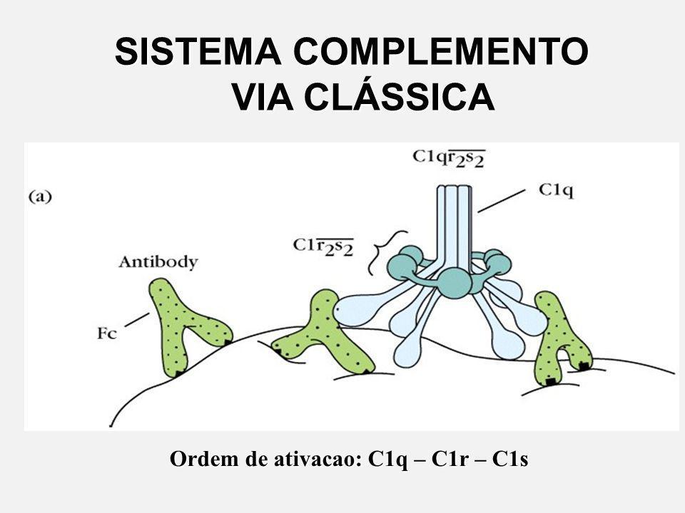 SISTEMA COMPLEMENTO VIA CLÁSSICA Ordem de ativacao: C1q – C1r – C1s