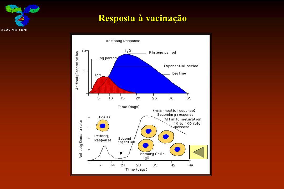 Resposta à vacinação