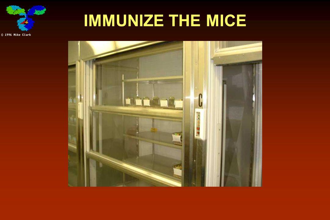 IMMUNIZE THE MICE