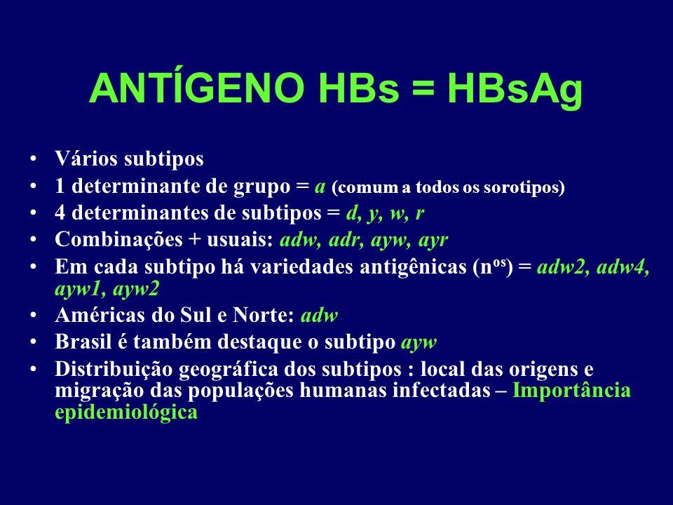 ANTÍGENO HBs = HBsAg Vários subtipos