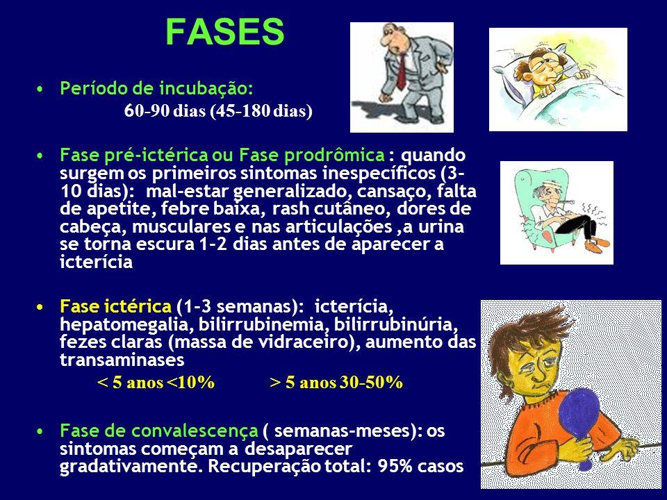 FASES Período de incubação: 60-90 dias (45-180 dias)