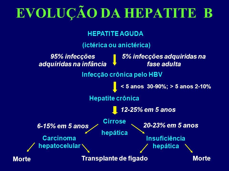 EVOLUÇÃO DA HEPATITE B HEPATITE AGUDA (ictérica ou anictérica)