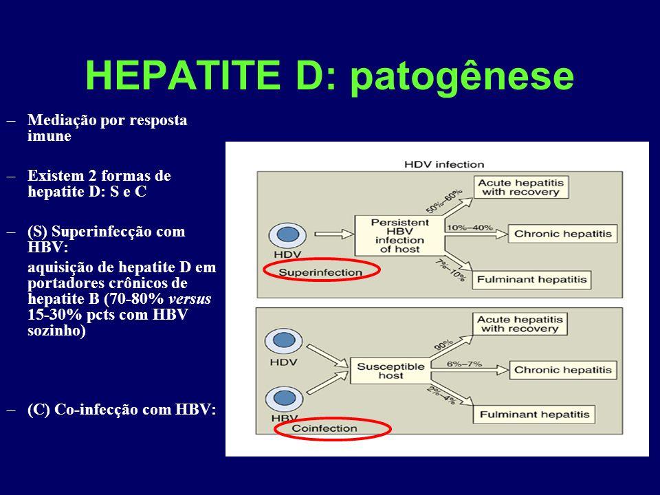 HEPATITE D: patogênese