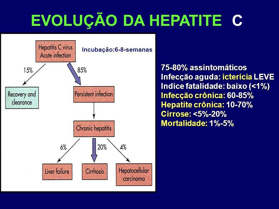 EVOLUÇÃO DA HEPATITE C 75-80% assintomáticos