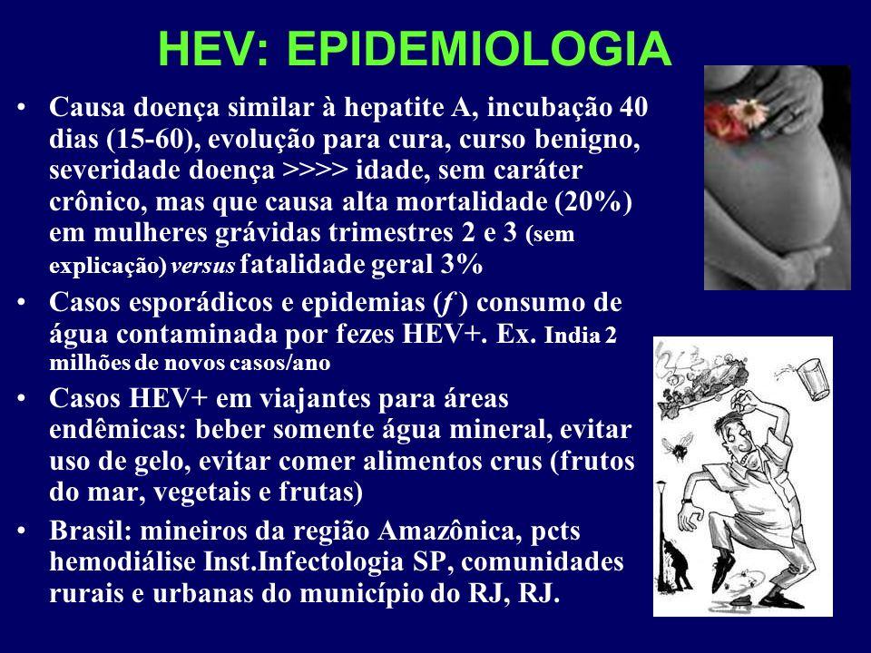 HEV: EPIDEMIOLOGIA
