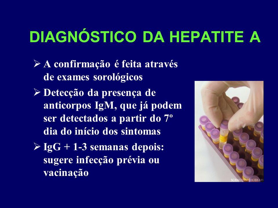 DIAGNÓSTICO DA HEPATITE A