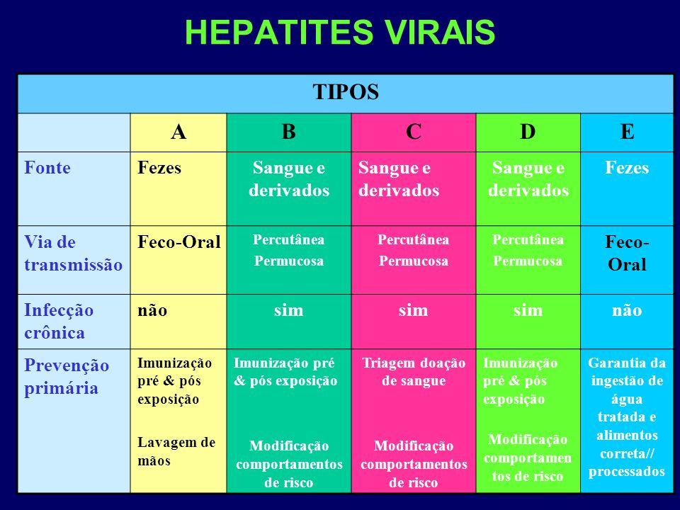 HEPATITES VIRAIS TIPOS A B C D E Fonte Fezes Sangue e derivados