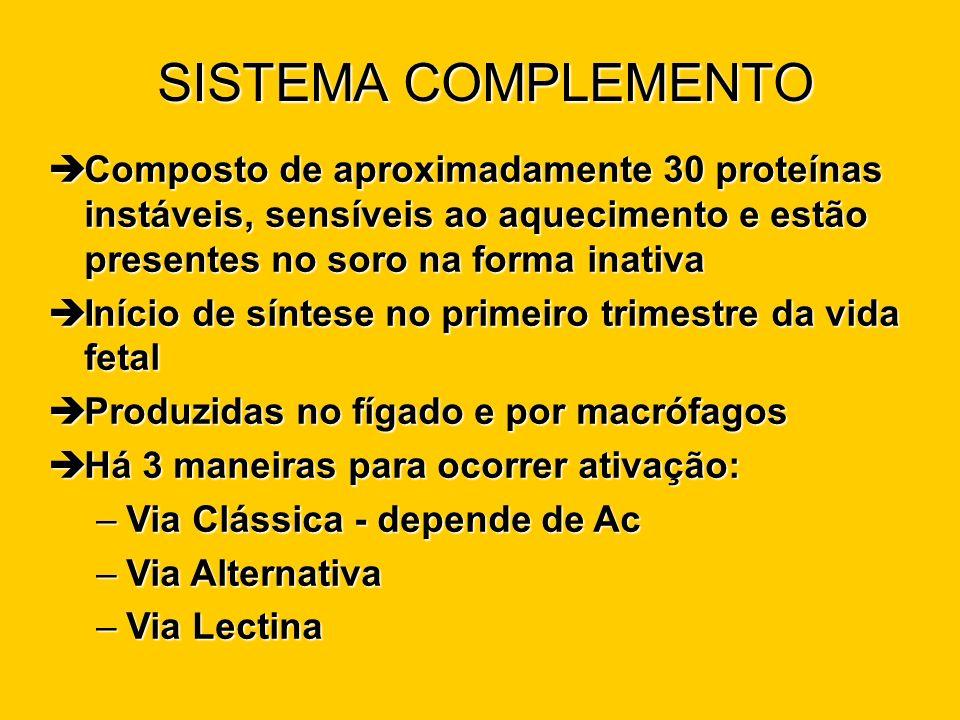 SISTEMA COMPLEMENTO Composto de aproximadamente 30 proteínas instáveis, sensíveis ao aquecimento e estão presentes no soro na forma inativa.