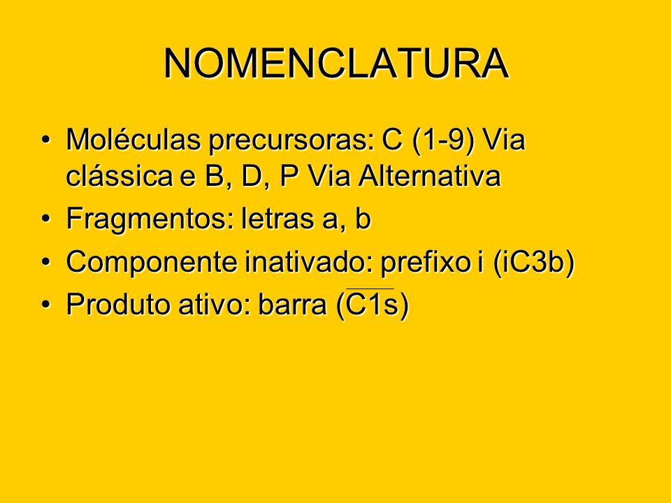 NOMENCLATURA Moléculas precursoras: C (1-9) Via clássica e B, D, P Via Alternativa. Fragmentos: letras a, b.