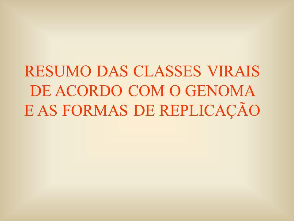 RESUMO DAS CLASSES VIRAIS DE ACORDO COM O GENOMA E AS FORMAS DE REPLICAÇÃO