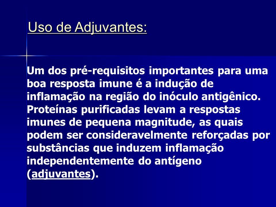 Uso de Adjuvantes: Um dos pré-requisitos importantes para uma boa resposta imune é a indução de inflamação na região do inóculo antigênico.
