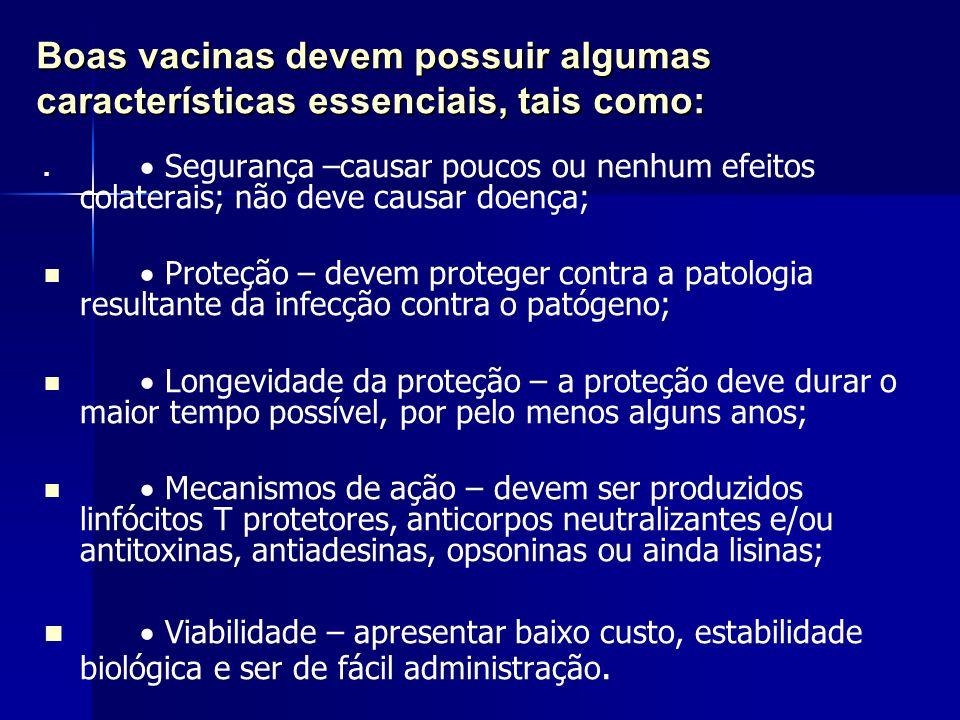Boas vacinas devem possuir algumas características essenciais, tais como: