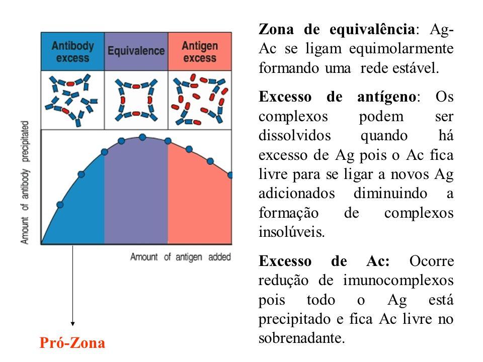Zona de equivalência: Ag-Ac se ligam equimolarmente formando uma rede estável.