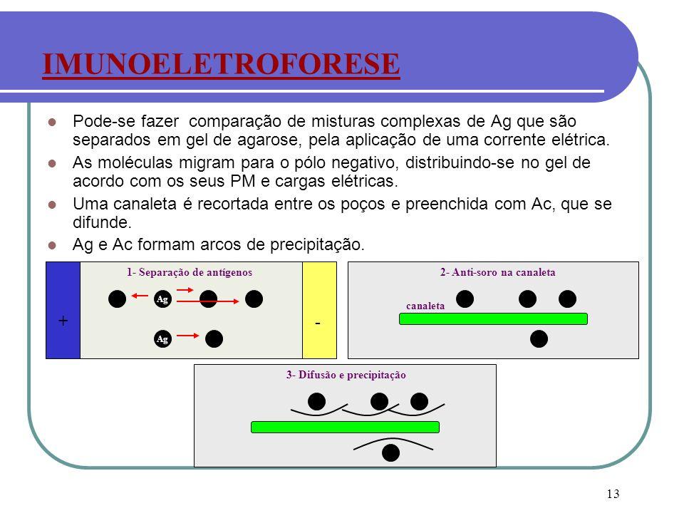 IMUNOELETROFORESE Pode-se fazer comparação de misturas complexas de Ag que são separados em gel de agarose, pela aplicação de uma corrente elétrica.