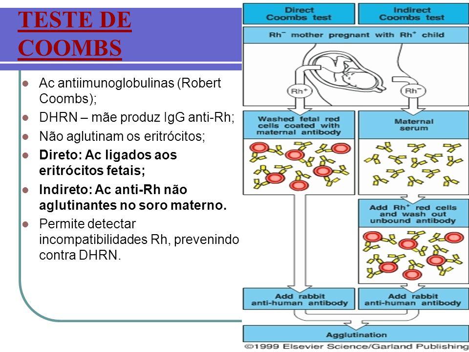 TESTE DE COOMBS Ac antiimunoglobulinas (Robert Coombs);