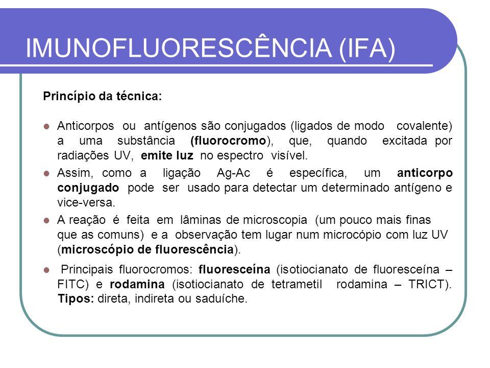 IMUNOFLUORESCÊNCIA (IFA)