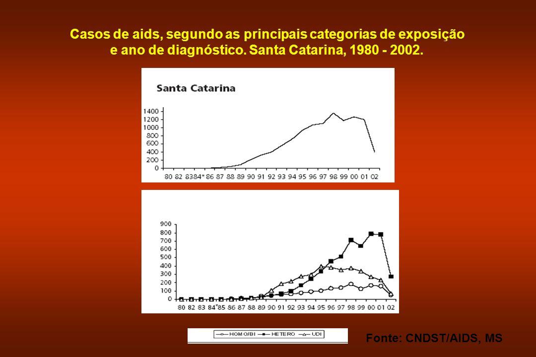 Casos de aids, segundo as principais categorias de exposição e ano de diagnóstico. Santa Catarina, 1980 - 2002.