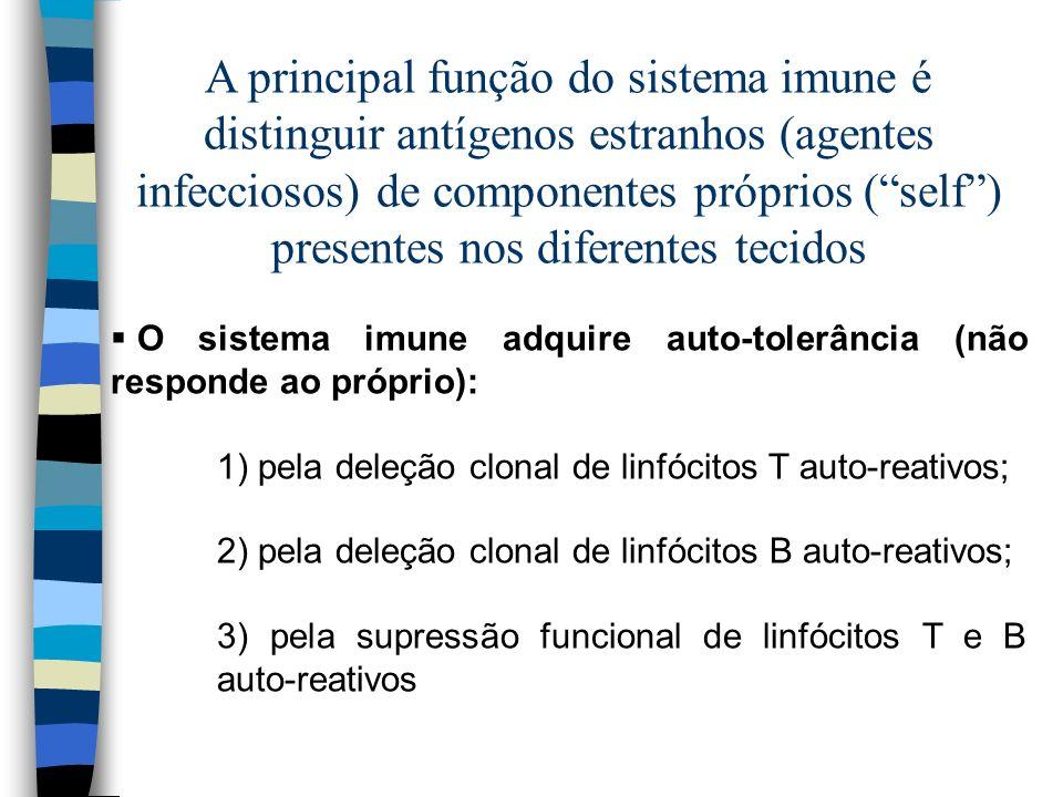 A principal função do sistema imune é distinguir antígenos estranhos (agentes infecciosos) de componentes próprios ( self ) presentes nos diferentes tecidos