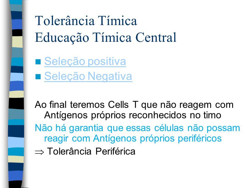Tolerância Tímica Educação Tímica Central