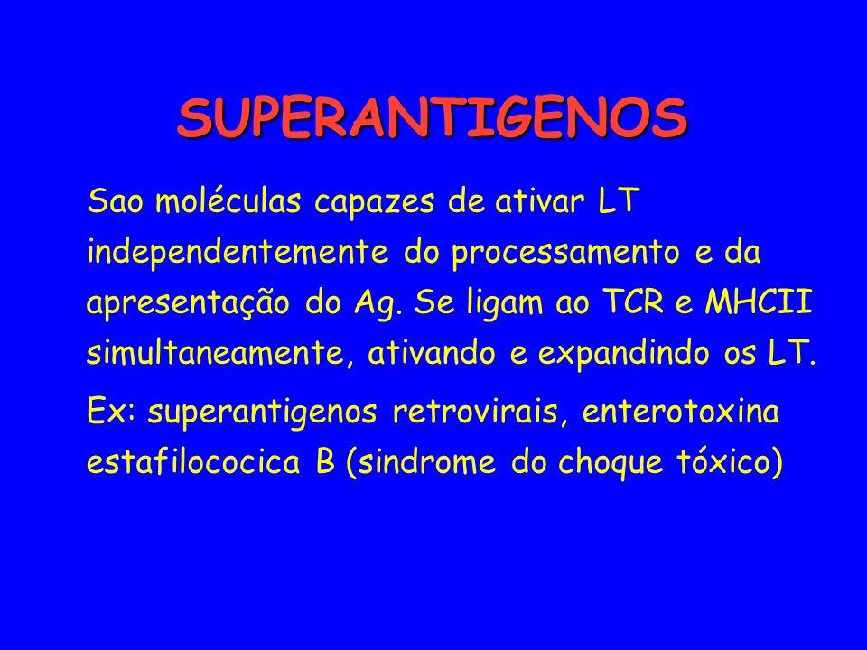 SUPERANTIGENOS