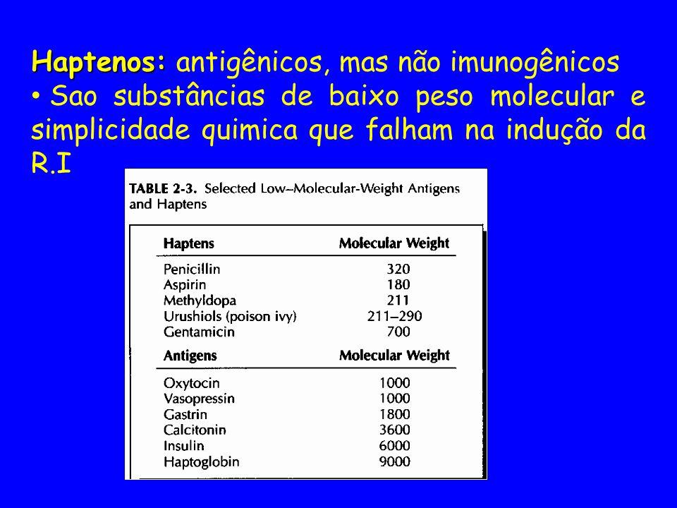 Haptenos: antigênicos, mas não imunogênicos