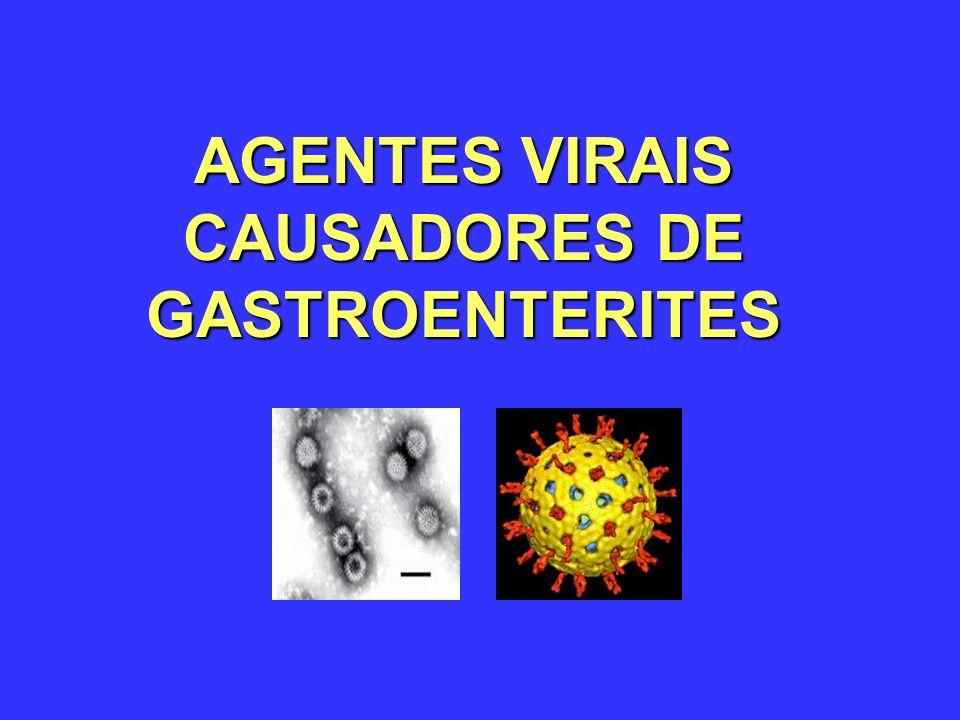AGENTES VIRAIS CAUSADORES DE GASTROENTERITES
