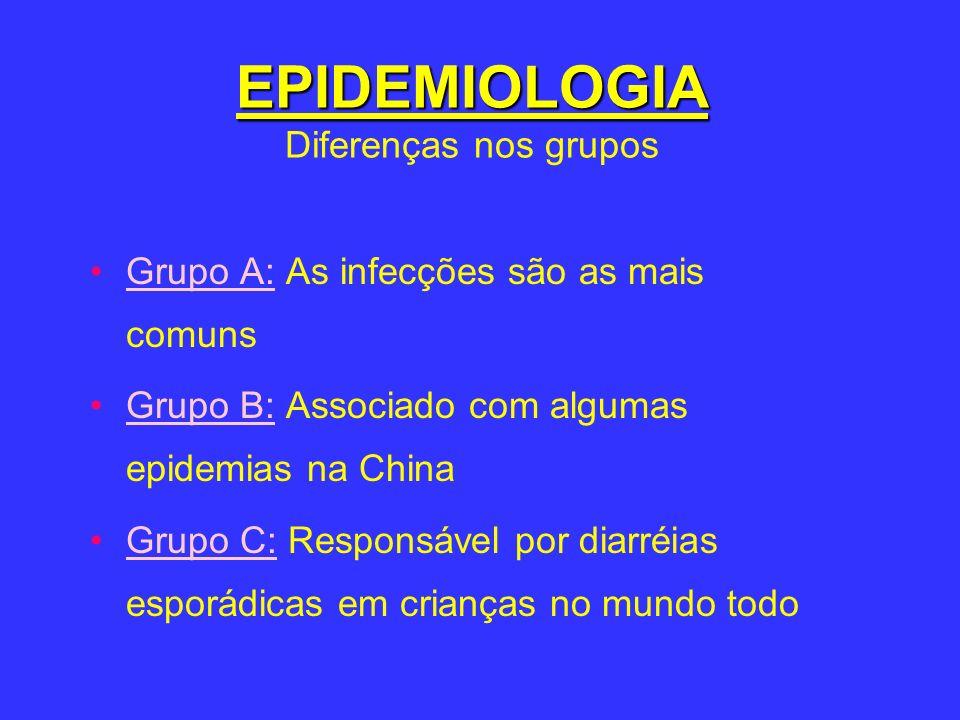 EPIDEMIOLOGIA Diferenças nos grupos