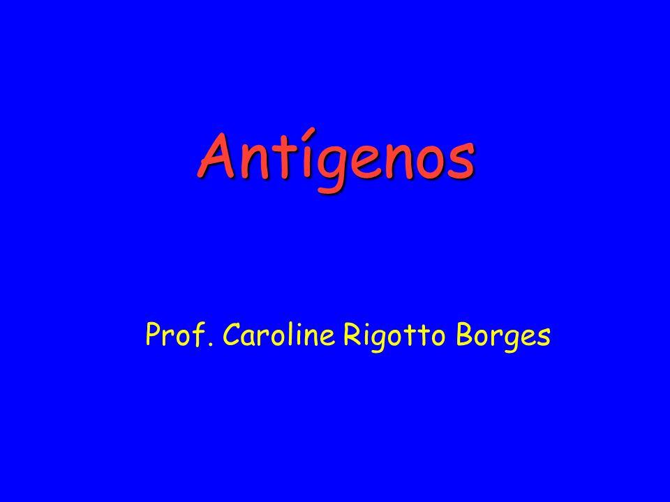 Prof. Caroline Rigotto Borges