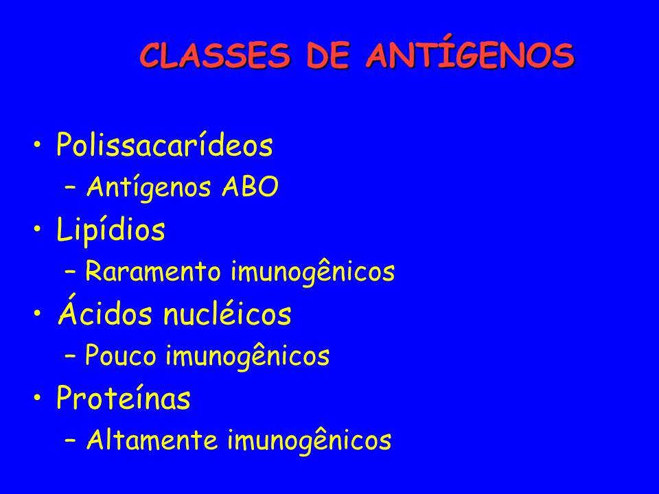 CLASSES DE ANTÍGENOS Polissacarídeos Lipídios Ácidos nucléicos