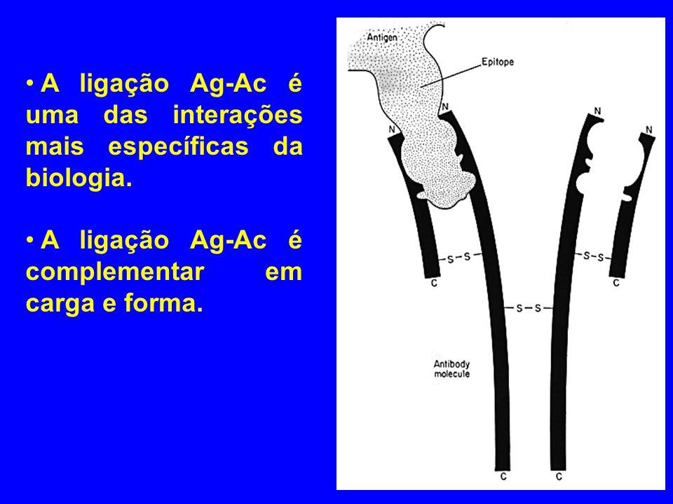 A ligação Ag-Ac é uma das interações mais específicas da biologia.