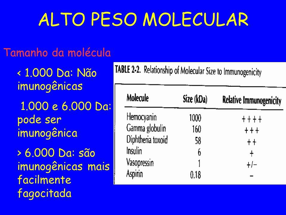 ALTO PESO MOLECULAR Tamanho da molécula