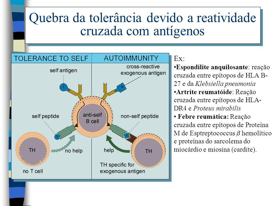 Quebra da tolerância devido a reatividade cruzada com antígenos