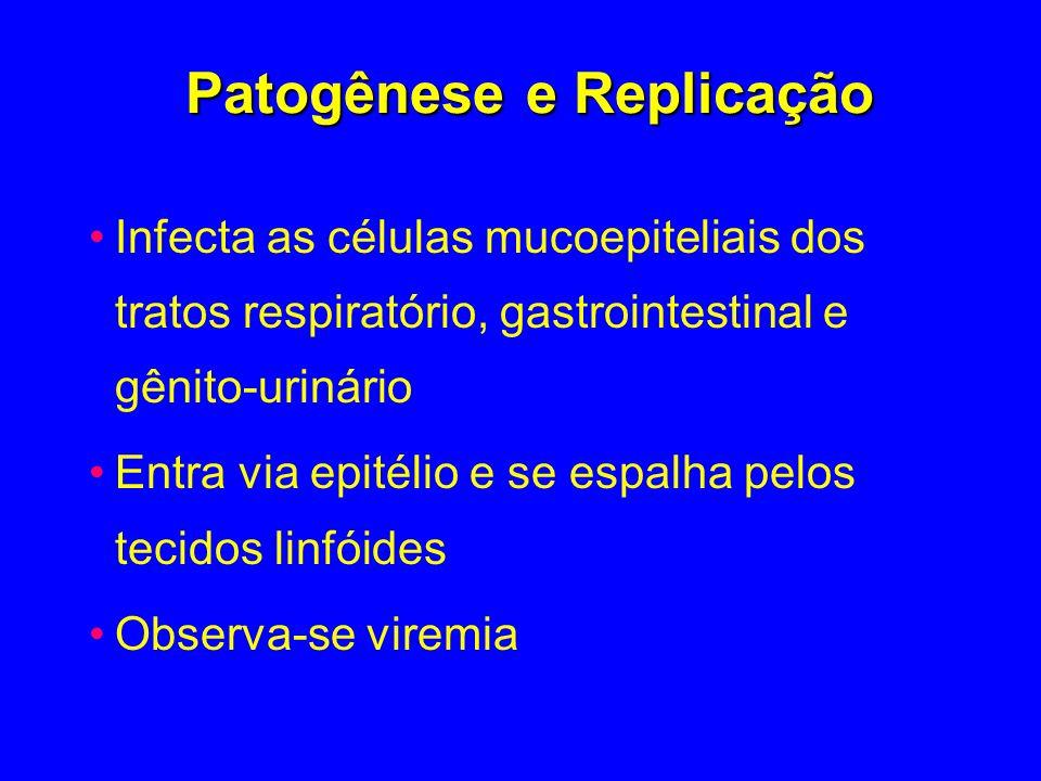 Patogênese e Replicação