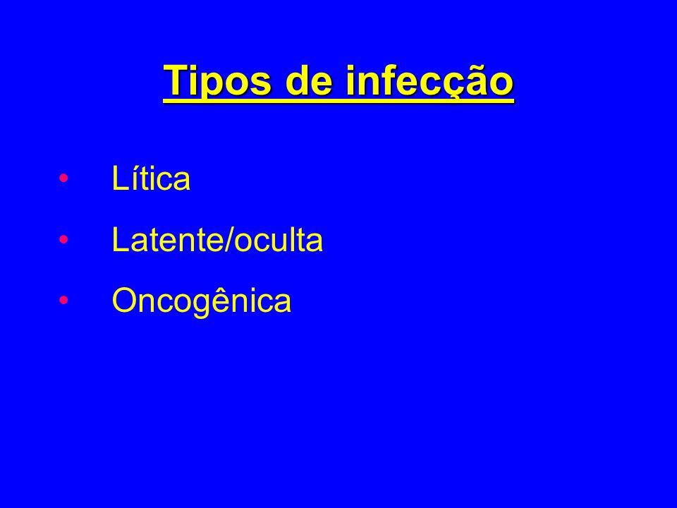 Tipos de infecção Lítica Latente/oculta Oncogênica