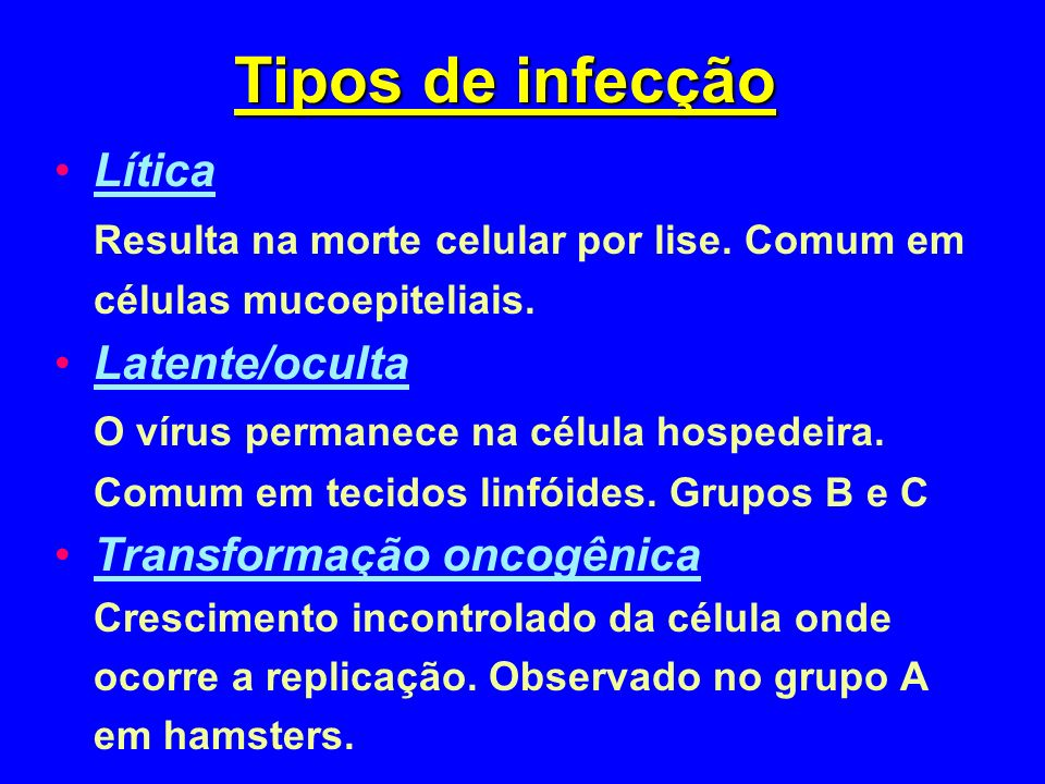 Tipos de infecção Lítica