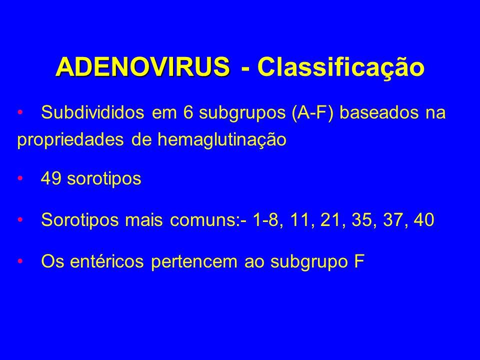 ADENOVIRUS - Classificação