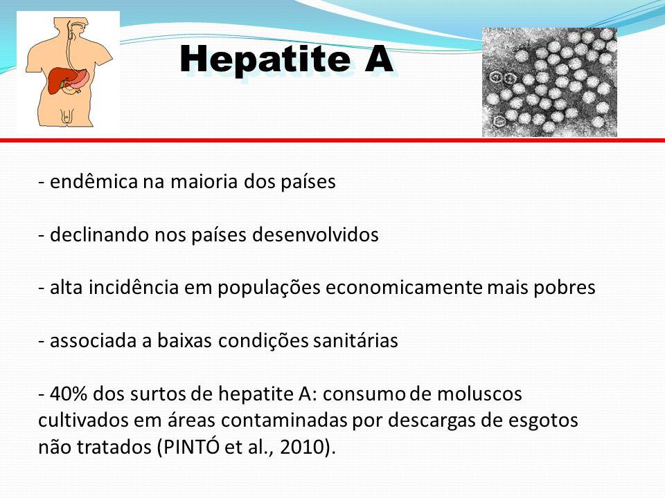 Hepatite A - endêmica na maioria dos países