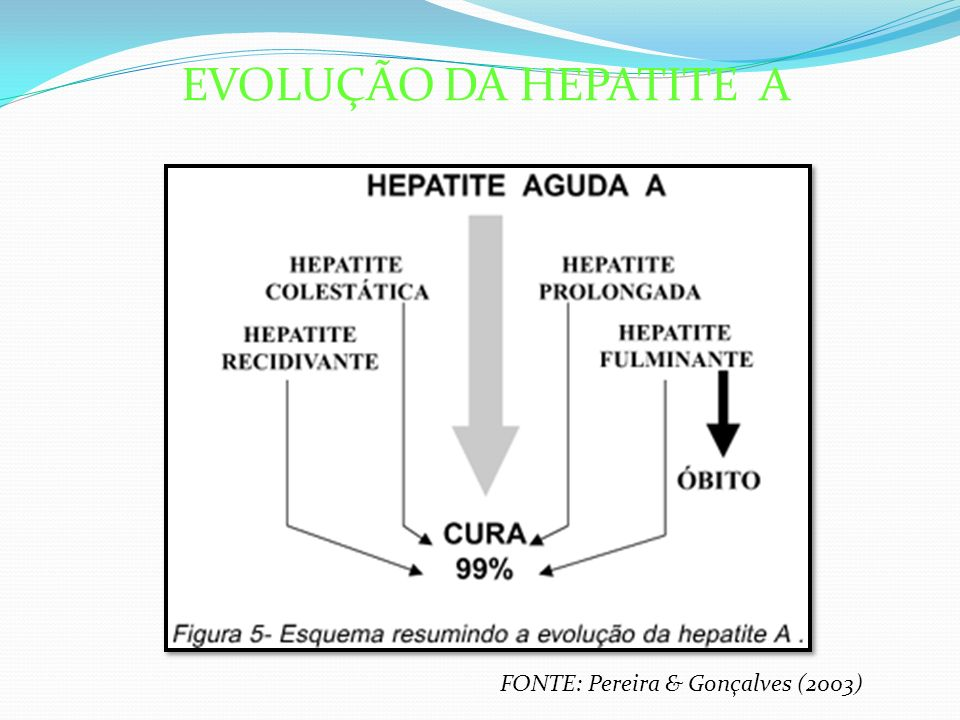 EVOLUÇÃO DA HEPATITE A FONTE: Pereira & Gonçalves (2003)