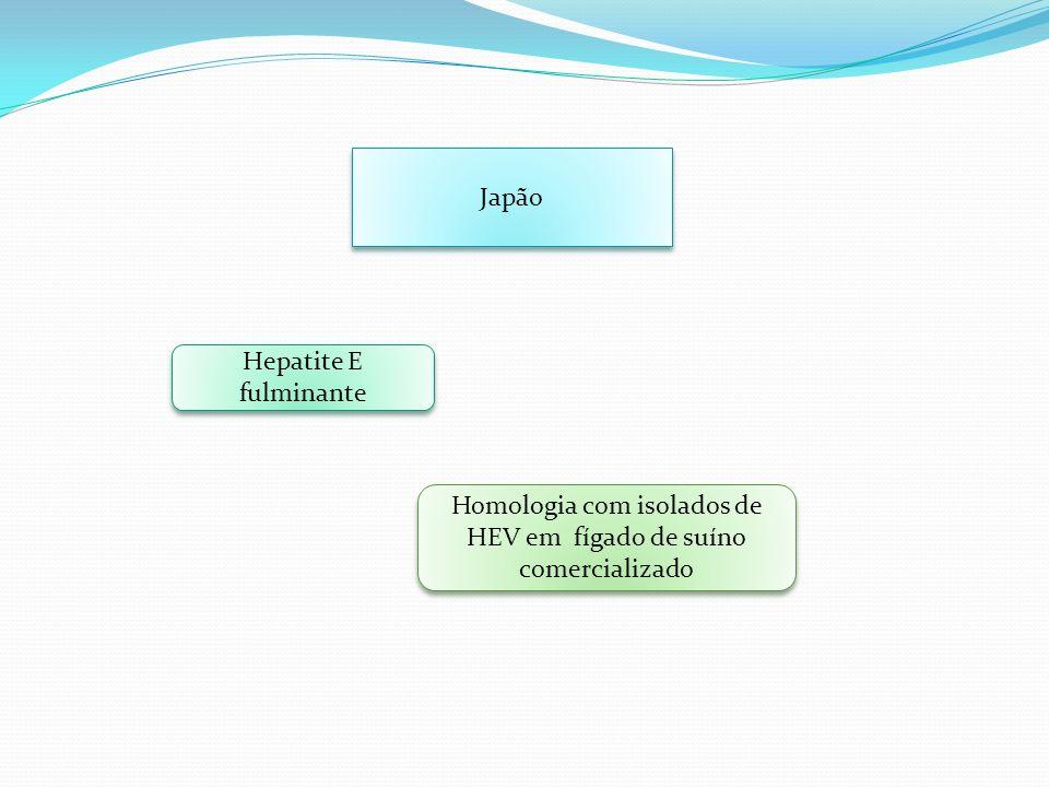 Homologia com isolados de HEV em fígado de suíno comercializado