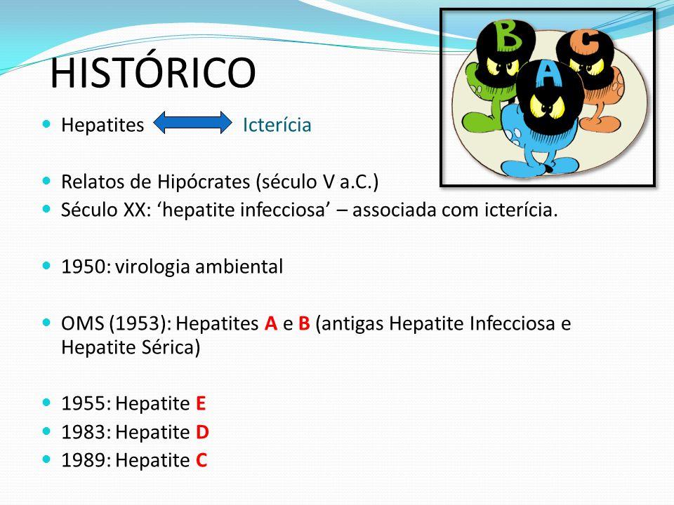 HISTÓRICO Hepatites Icterícia Relatos de Hipócrates (século V a.C.)
