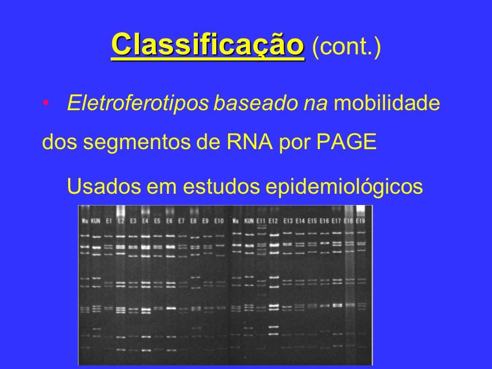Classificação (cont.) Eletroferotipos baseado na mobilidade dos segmentos de RNA por PAGE.