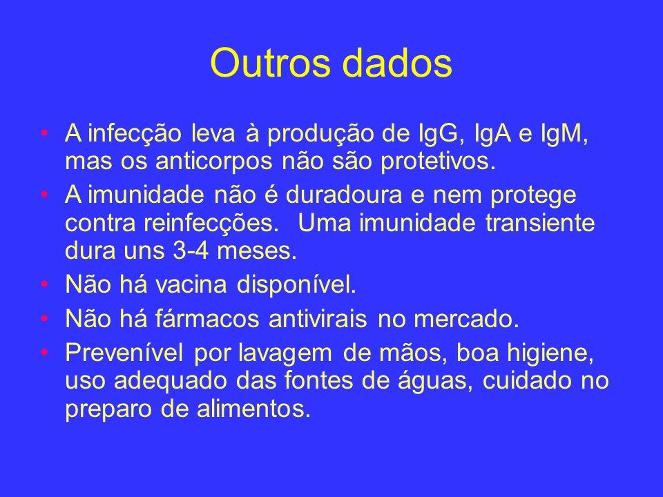 Outros dadosA infecção leva à produção de IgG, IgA e IgM, mas os anticorpos não são protetivos.