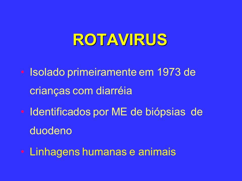 ROTAVIRUS Isolado primeiramente em 1973 de crianças com diarréia