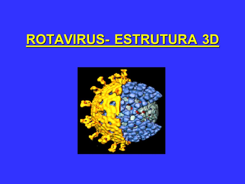 ROTAVIRUS- ESTRUTURA 3D