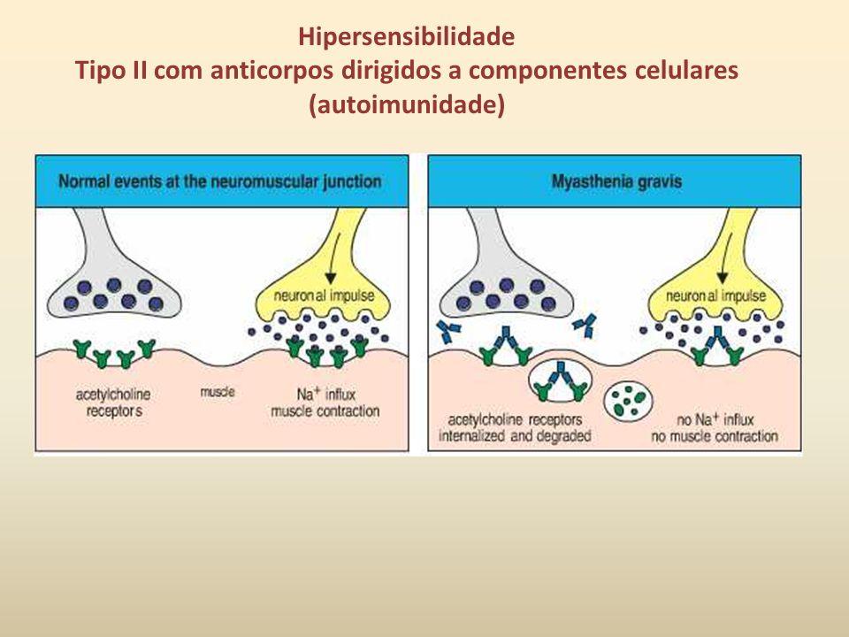Hipersensibilidade Tipo II com anticorpos dirigidos a componentes celulares (autoimunidade)