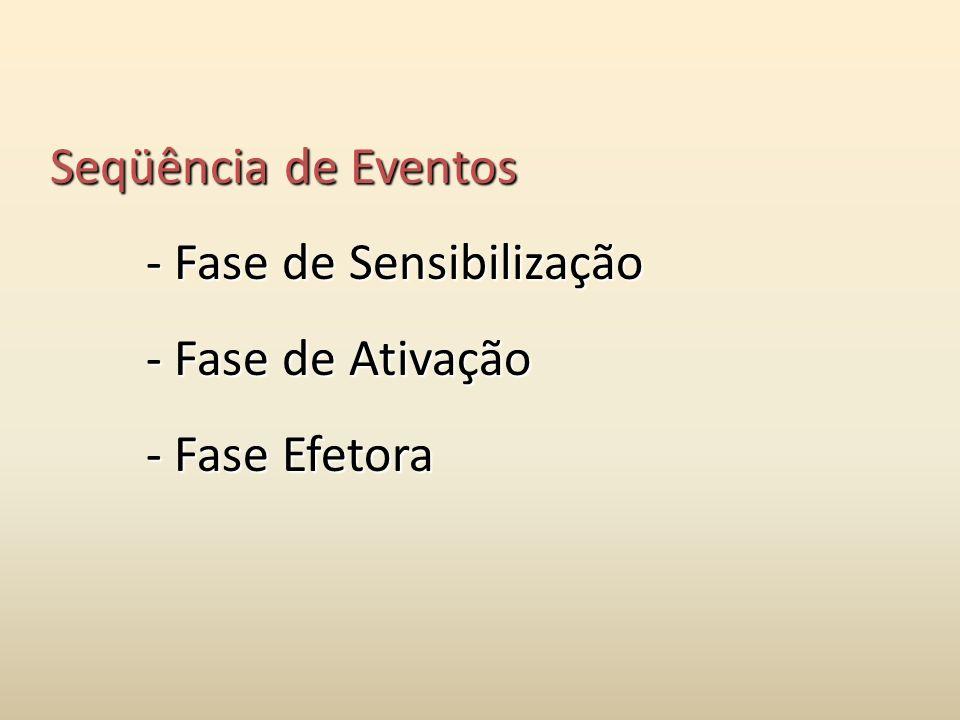 Seqüência de Eventos - Fase de Sensibilização - Fase de Ativação - Fase Efetora