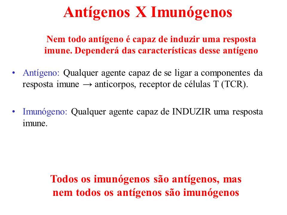 Antígenos X Imunógenos