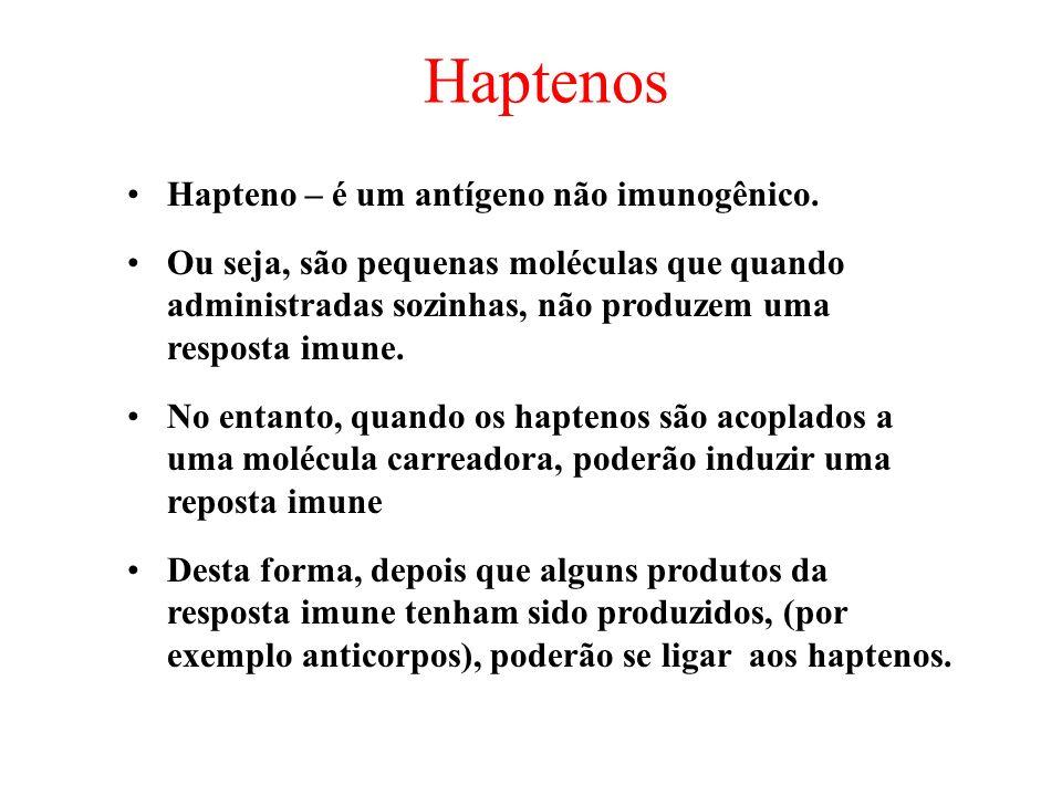 Haptenos Hapteno – é um antígeno não imunogênico.